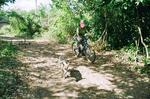 20081231cycle3.JPG