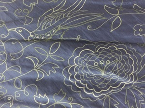 bluebirdisetanonep4.JPG