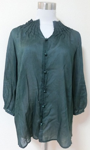 degrtackseethroughblouse1.JPG