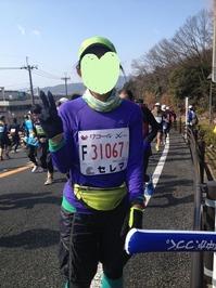 kyotomarason2014_2.JPG