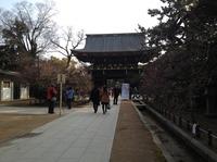 kyotomarason2014_4.JPG