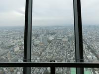 tokyo141023_4.JPG